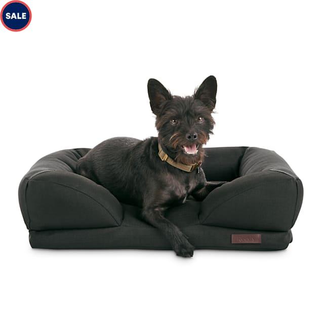 "Reddy Indoor/Outdoor Black Dog Bed, 24"" L X 18"" W - Carousel image #1"
