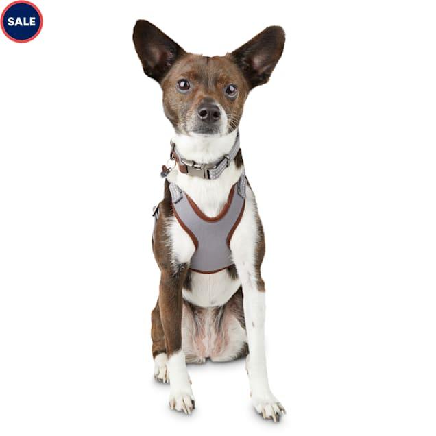 Reddy Grey Cotton Canvas Dog Harness, Medium - Carousel image #1