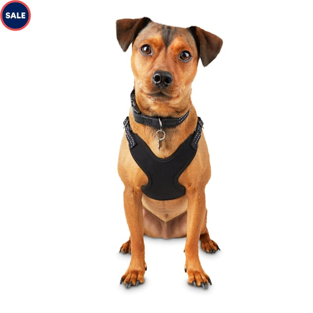 Reddy Black Cotton Canvas Dog Harness, Small - Carousel image #1