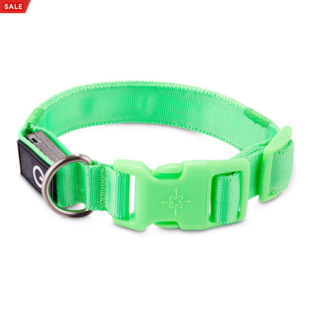 Good2Go Neon Green LED Light-Up Dog Collar, Small - Carousel image #1