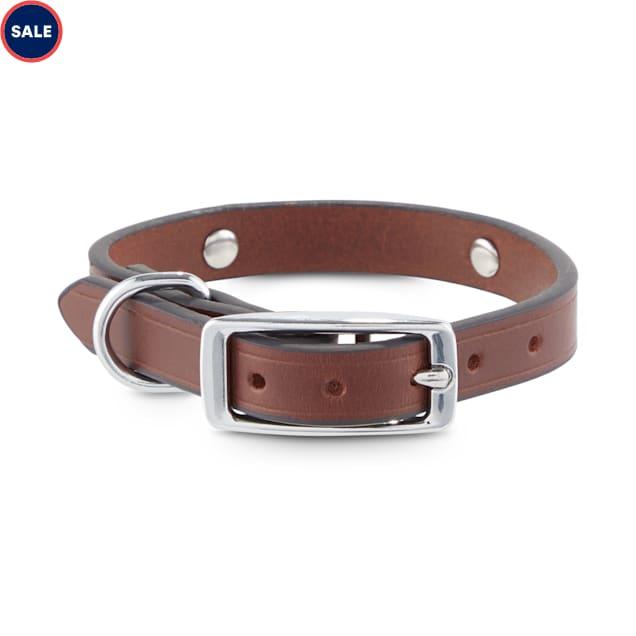 Bond & Co. Studded Leather Dog Collar, XX-Small - Carousel image #1