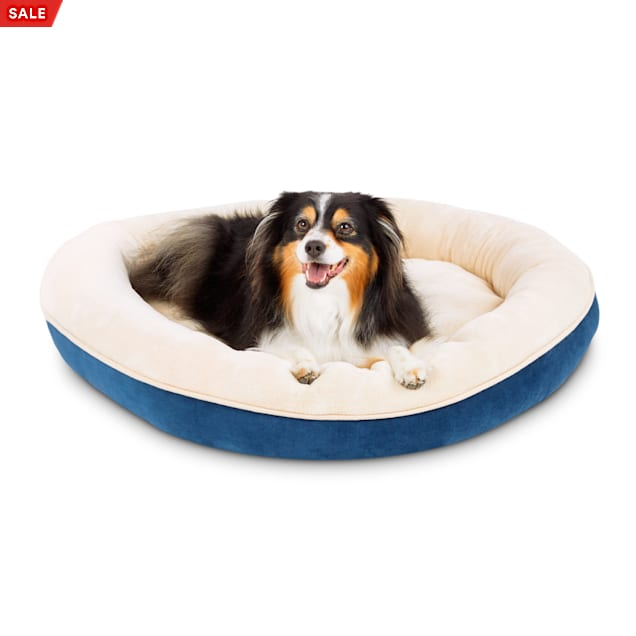 """EveryYay Essentials Snooze Fest Blue Round Dog Bed, 34"""" L X 34"""" W - Carousel image #1"""