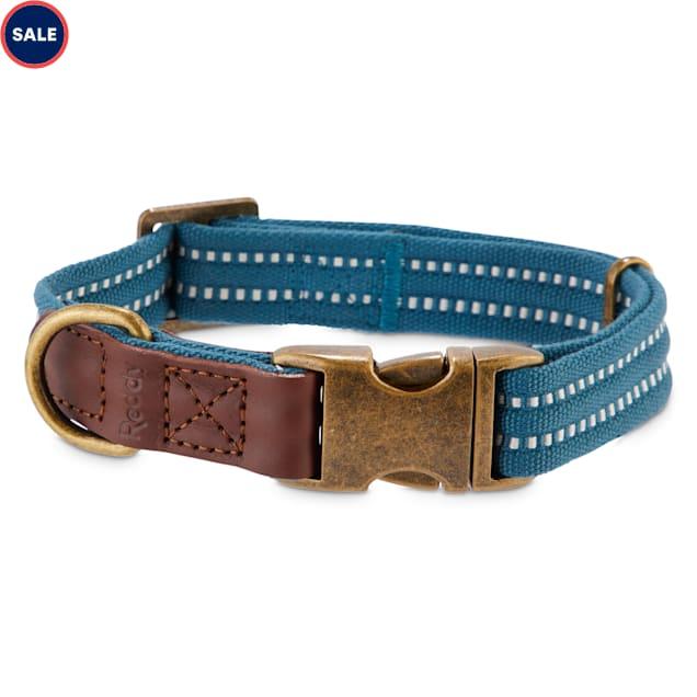 Reddy Slate Blue Webbed Nylon Dog Collar, Small - Carousel image #1