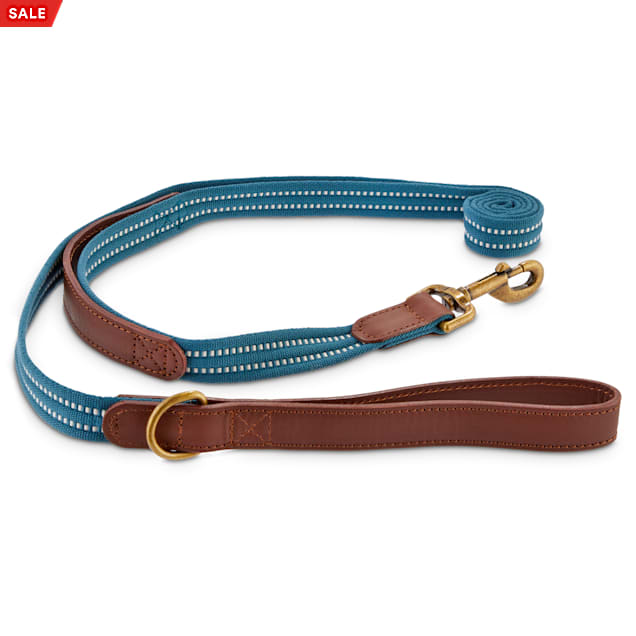 Reddy Slate Blue Webbed Nylon Dog Leash, 6 ft. - Carousel image #1