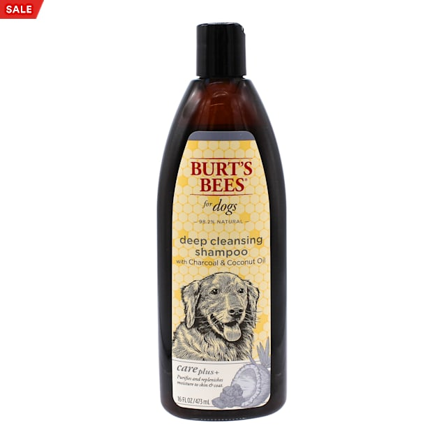 Burt's Bees Care Plus+ Charcoal & Coconut Oil Deep Cleansing Shampoo for Dogs, 16 fl. oz. - Carousel image #1