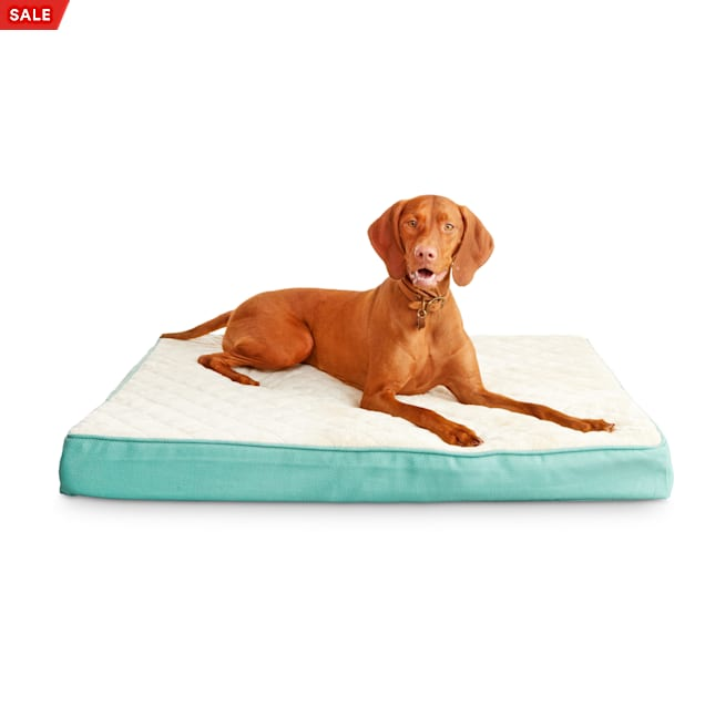 "Harmony Green Orthopedic Lounger Dog Bed, 40"" L X 30"" W - Carousel image #1"