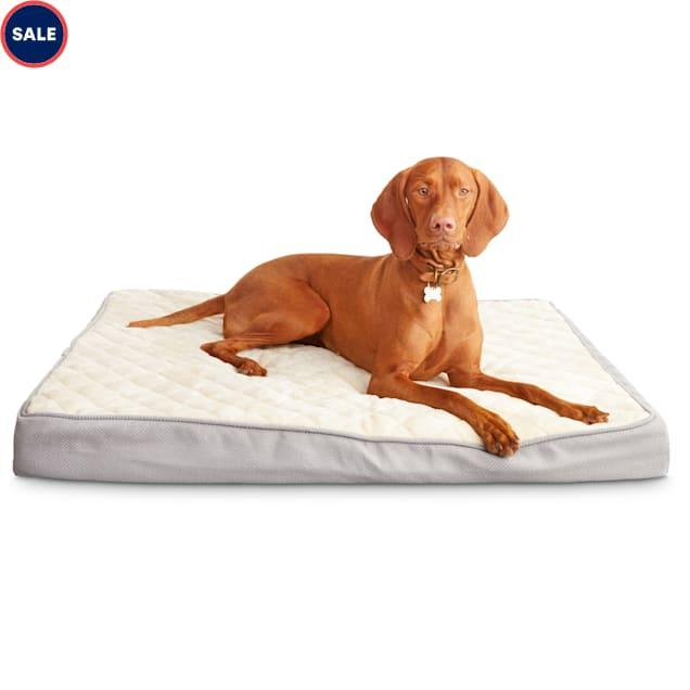 "Harmony Gray Orthopedic Lounger Dog Bed, 40"" L X 30"" W - Carousel image #1"