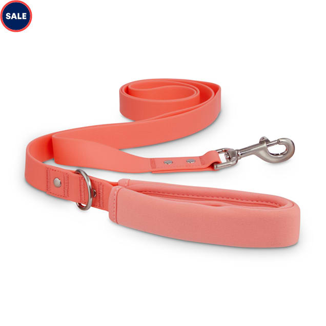 Reddy Pink Durable Dog Leash, 6 ft. - Carousel image #1