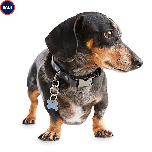 Reddy Black Durable Dog Collar, Small - Carousel image #1