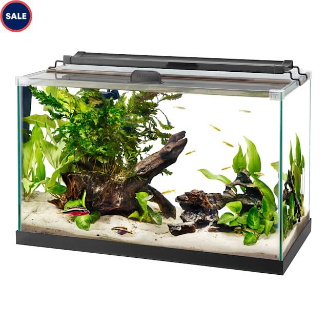 Aqueon Rimless Black Tank Aquarium, 10 Gallon - Carousel image #1