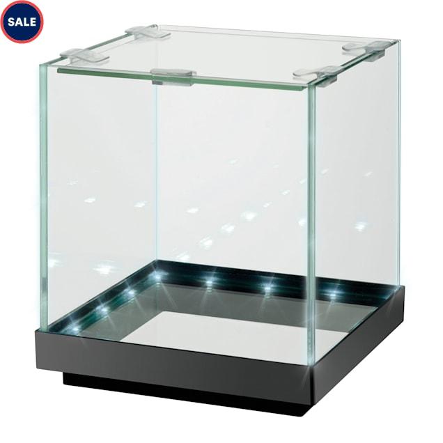 Aqueon Edgelit Cube Glass Top Aquarium, 1 Gallon - Carousel image #1