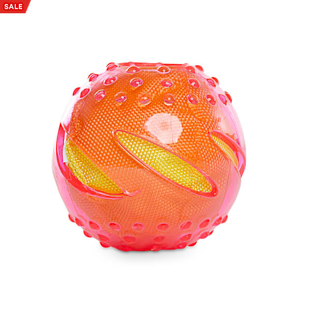 Leaps & Bounds Crinkle Ball Assorted Dog Toy, Medium - Carousel image #1