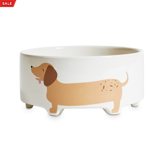 EveryYay Dining In Footed Ceramic Dog Bowl, 3.4 Cups - Carousel image #1