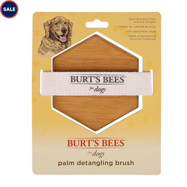 Burt's Bees Palm Detangling Brush for Dogs - Carousel image #1