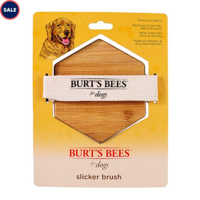 Burt's Bees Palm Slicker Brush for Dogs - Carousel image #1
