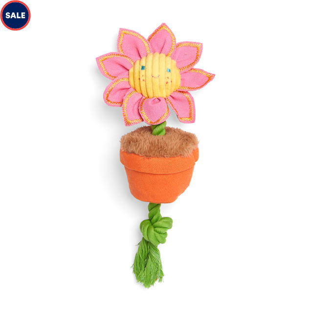 Bond & Co. Started As A Bottle Recycled & Reinvented Sunflower Power Plush & Rope Dog Toy, Medium - Carousel image #1