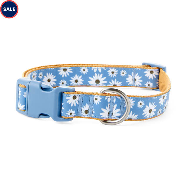 Bond & Co. Started As A Bottle Recycled & Reinvented Happy Daisies Dog Collar, Large - Carousel image #1