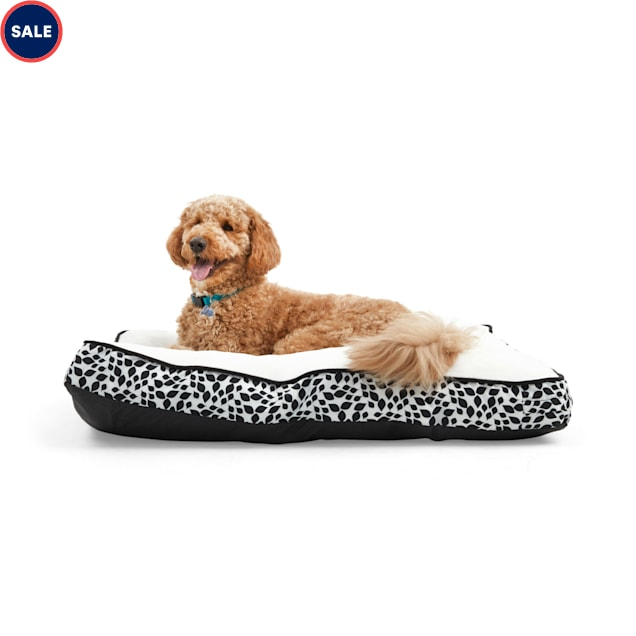 """EveryYay Essentials Snooze Fest Black Floral-Print Rectangle Lounger Dog Bed, 40"""" L X 30"""" W - Carousel image #1"""