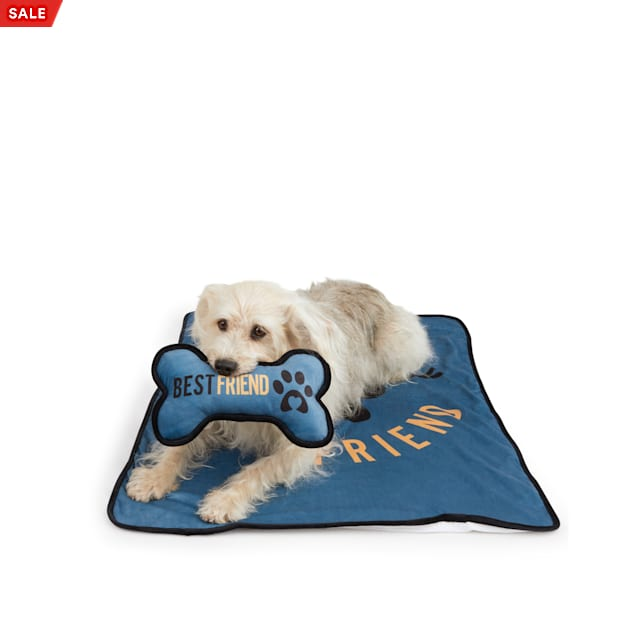 BOBS from Skechers Throw and Bone Pillow Set for Dogs - Carousel image #1