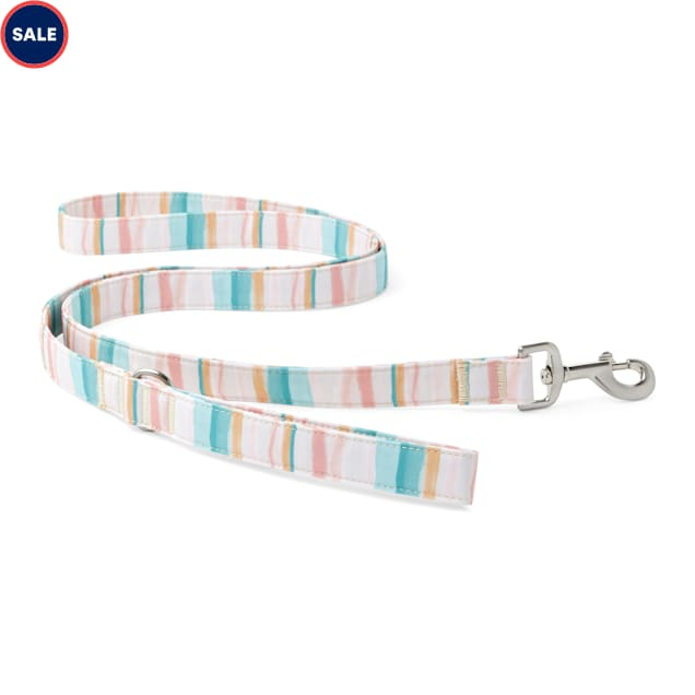 YOULY The Adventurer Multicolor Watercolor Striped Dog Leash, 6 ft. - Carousel image #1