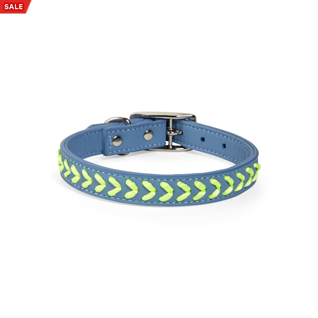 YOULY The Extrovert Blue & Rainbow Braided Dog Collar, Small - Carousel image #1