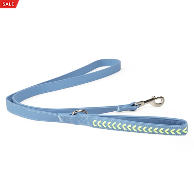 YOULY The Extrovert Blue & Rainbow Braided Dog Leash, 6 ft. - Carousel image #1