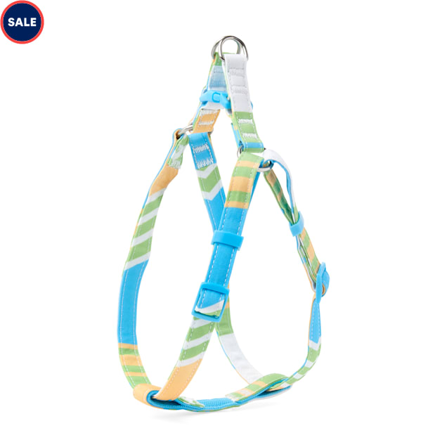 YOULY The Champion Multicolor Striped Dog Harness, Small - Carousel image #1