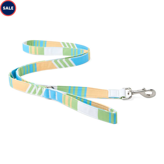 YOULY The Champion Multicolor Striped Dog Leash, 6 ft. - Carousel image #1