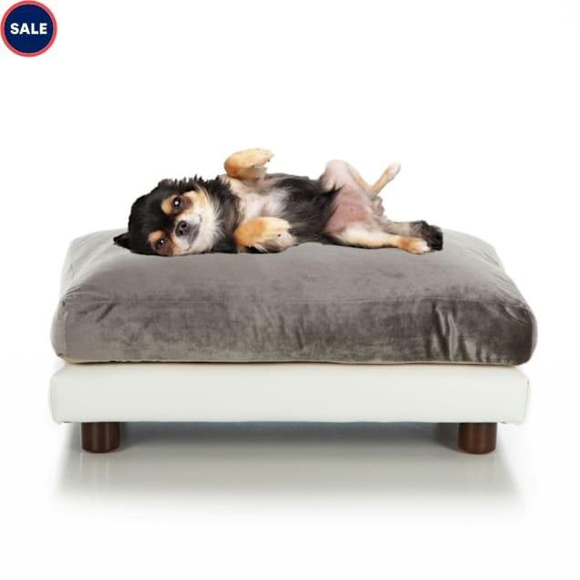 "Club Nine Pets Pewter Milo Orthopedic Dog Bed, 24"" L X 34"" W - Carousel image #1"