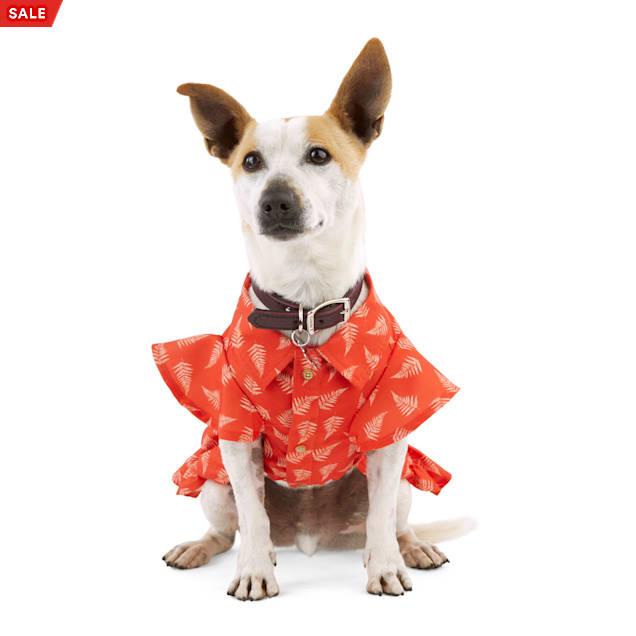 YOULY Started As A Bottle Recycled & Reinvented Red Fern-Print Dog Dress, X-Small - Carousel image #1