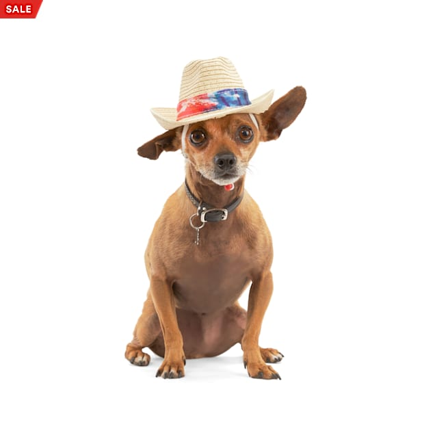YOULY The Wanderer Straw Dog Hat, X-Small/Small - Carousel image #1