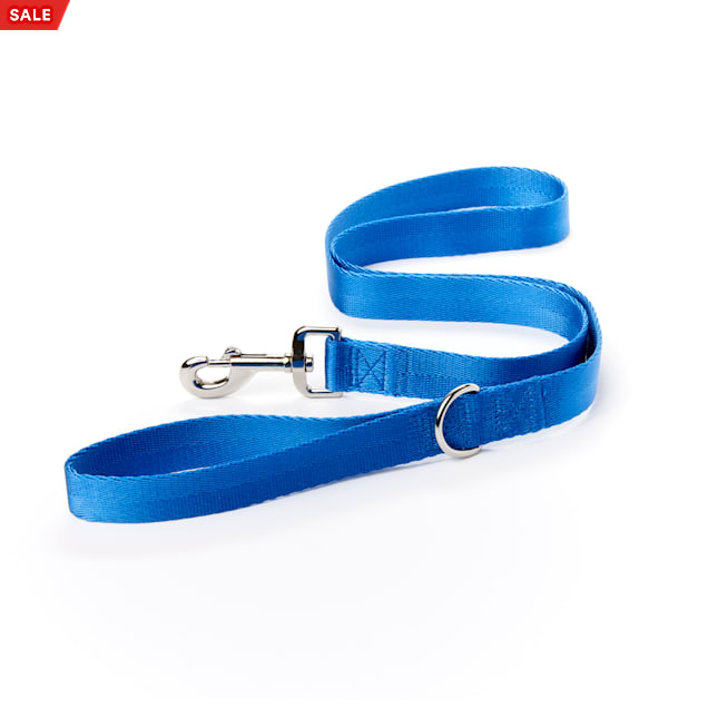 YOULY The Classic Blue Webbed 4 Foot Nylon Dog Leash, X-Small - Carousel image #1