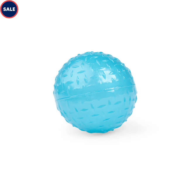Leaps & Bounds Romp & Run Glow-In-The-Dark Bouncy Ball Dog Toy in Various Styles, X-Small - Carousel image #1