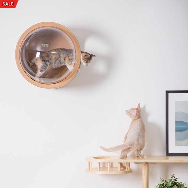 MYZOO AndMakers Spaceship Oak Gamma Wall Mounted Cat Bed On the Left - Carousel image #1