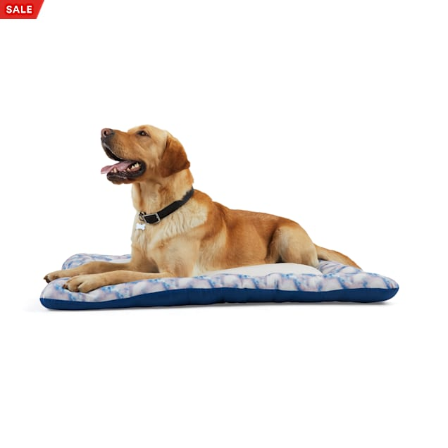 """EveryYay Essentials Snooze Fest Multicolor Tie-Dye Cushioned Mat Dog Bed, 40"""" L X 30"""" W - Carousel image #1"""