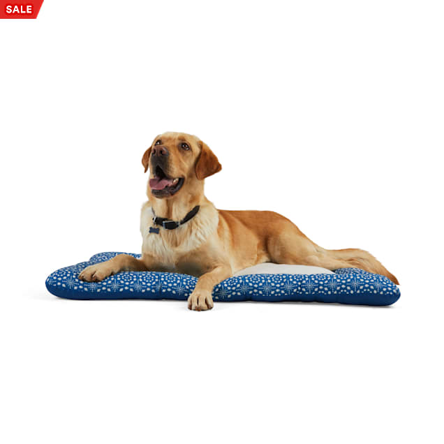 """EveryYay Essentials Snooze Fest Blue Tile-Print Cushioned Mat Dog Bed, 40"""" L X 30"""" W - Carousel image #1"""