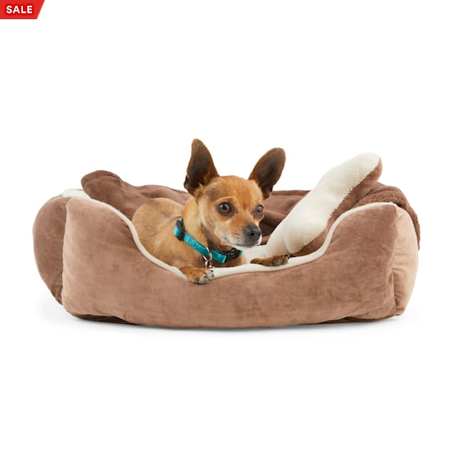"""EveryYay Essentials Brown Snooze Fest Dog Bed Bundle, 22"""" L X 18"""" W - Carousel image #1"""