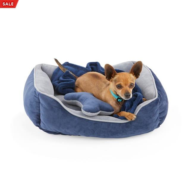 """EveryYay Essentials Navy Snooze Fest Dog Bed Bundle, 22"""" L X 18"""" W - Carousel image #1"""