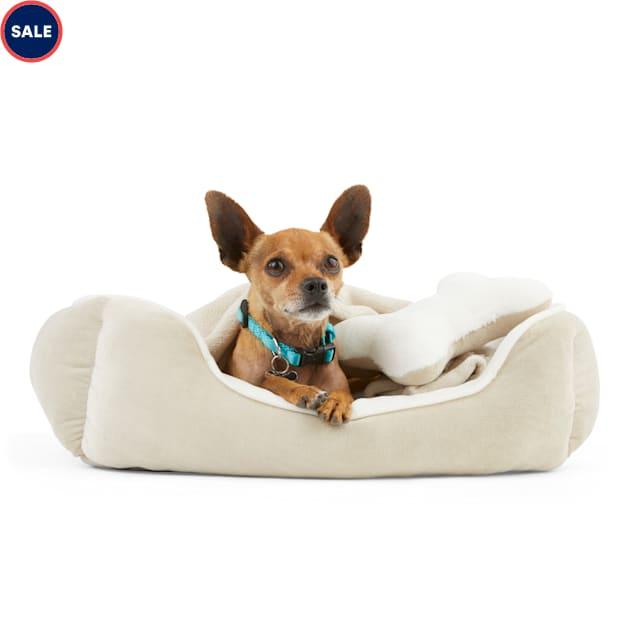 "EveryYay Essentials Khaki Snooze Fest Dog Bed Bundle, 22"" L X 18"" W - Carousel image #1"