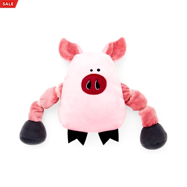 Leaps & Bounds Plush Pig Multi-Squeak Dog Toy with Movable Rope Arms, Small - Carousel image #1