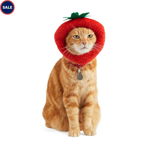 Bootique Berry Cute Cat Headpiece, Small/Medium - Carousel image #1