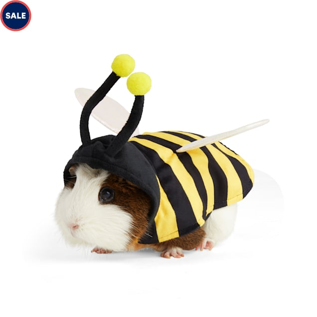 Bootique Buzzn' Bee Guinea Pig Costume - Carousel image #1