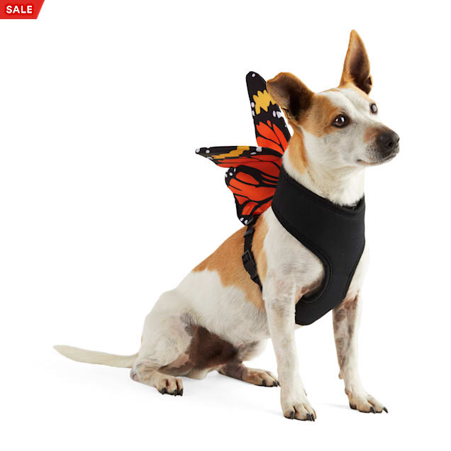 Bootique Social Butterfly Dog Harness, X-Small - Carousel image #1