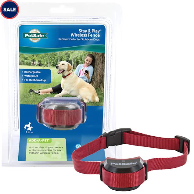 PetSafe Stubborn Dog Wireless Receiver Collar - Carousel image #1