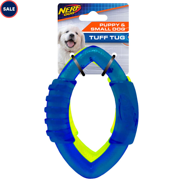 Nerf Translucent TPR Football Ring Blue and Green Dog Toy, Small, Pack of 2 - Carousel image #1