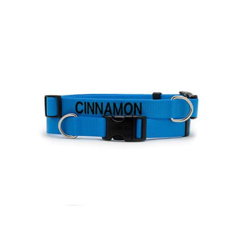 Coastal Pet Personalized Adjustable Nylon Tuff Collars in Blue Lagoon