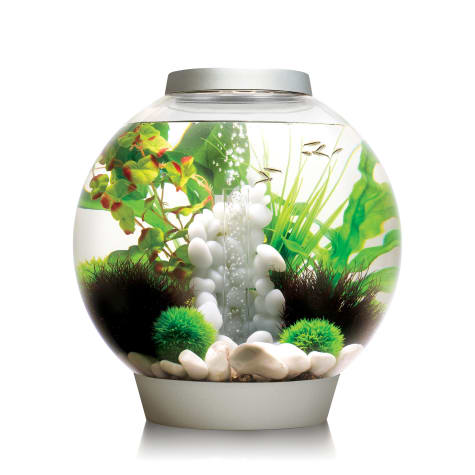 biOrb Silver Aquarium Kit with Light