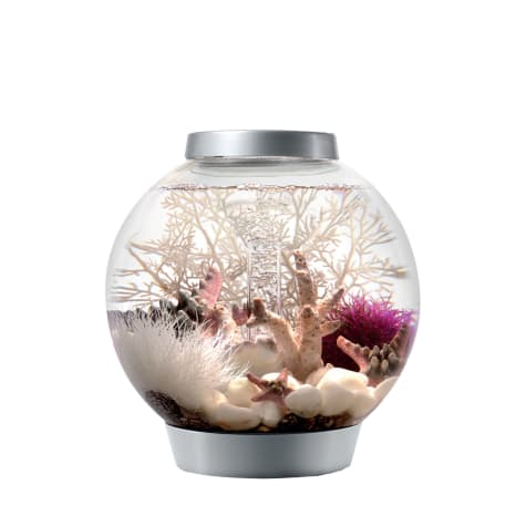 Baby biOrb Silver Aquarium Kit