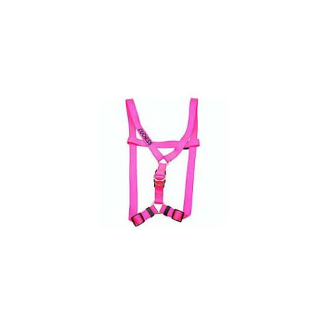 Coastal Pet Personalized Harness in Neon Pink