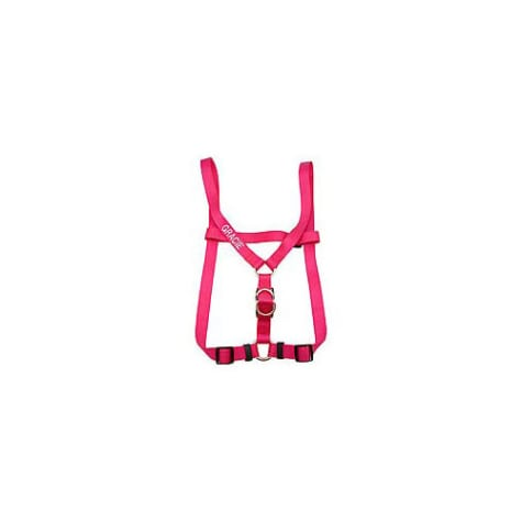 Coastal Pet Personalized Harness in Flamingo Pink